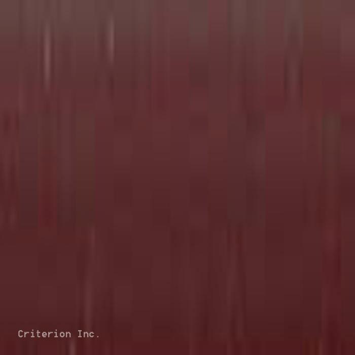 208 Dark Brown Strap Color