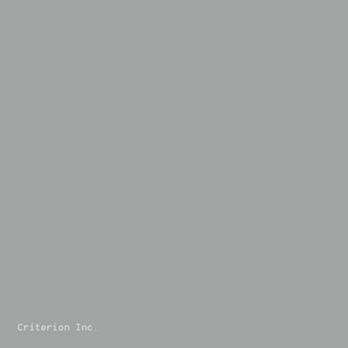 219 Grey Strap Color