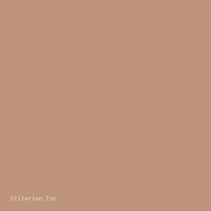 229 Cappuccino Strap Color