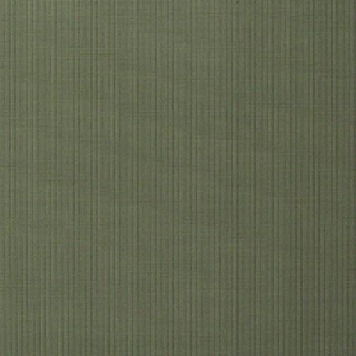B119 Dupioni Kiwi Grade B Fabric