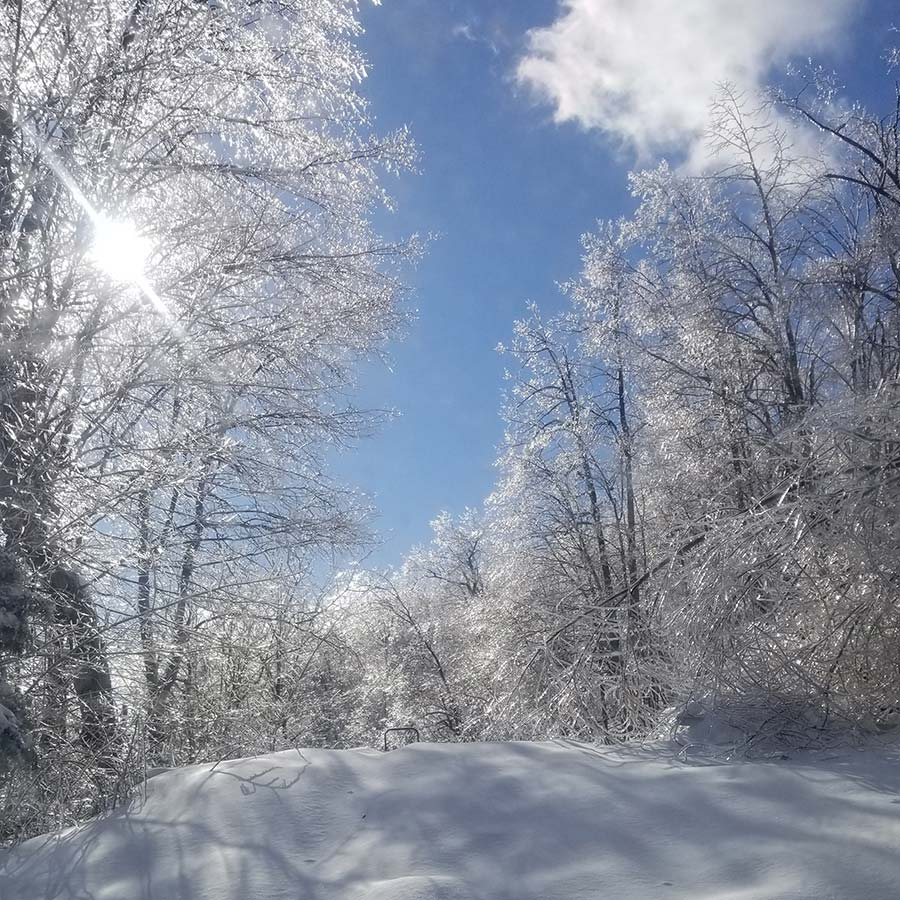 The winter sun in West Virginia